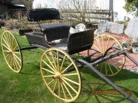#67 –   1920′s DOCTORS BUGGY – SINGLE HORSE