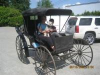 "#99-Horse Drawn Buggy – ""Surrey"""